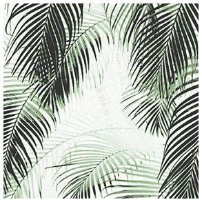 Palm by dims - Full Coverage. Price 7,1 € Palme by Dims - Heldækkende folie. Pris 49 dkk.