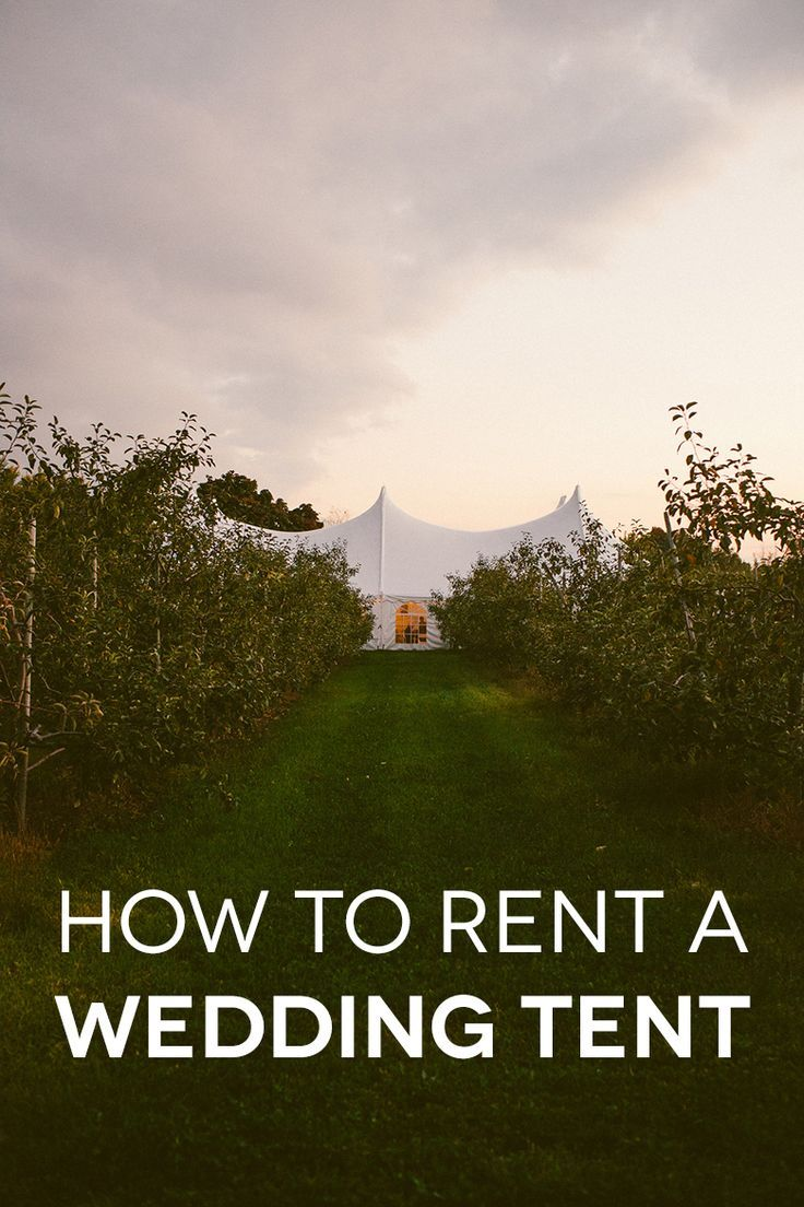 Want to tie the knot outside? Check out this guide to renting a wedding tent.
