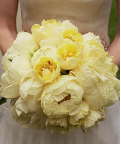 Soft yellow hues. Very nice. I think with some white colored flowers as well. Vary the texture with different flowers types.