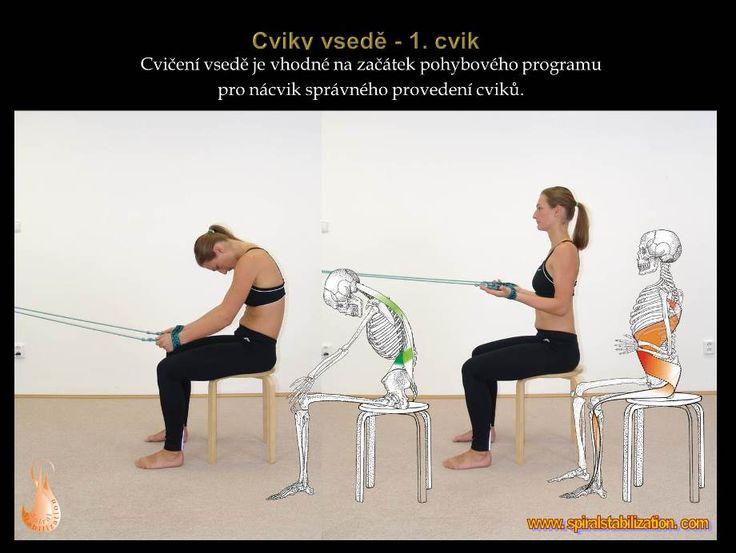 3 - Cviky