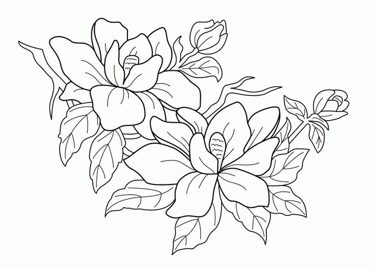 69 best batik patterns images on pinterest drawings coloring coloring book of flower