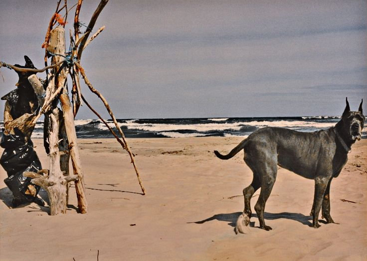 "Yury Ermolenko, ""GUARD OF A HEAVENLY GATE"" (Land art project ""Baltic - Hel""), 2003, Hel Peninsula, Baltic Sea, Poland #YuryErmolenko #юрийермоленко #ЮрийЕрмоленко #yuryermolenko #юрiйєрмоленко #ЮрiйЄрмоленко #юрийермоленкохудожник #landart #balticsea #sea #sky #amazing #RapanStudio #photo #photography #metaphysics #metaphysical #philosophy #installation #лэндарт #инсталляция #art #contemporaryart #modernart #magic #texture #лэндарт #poland #hel #helpeninsula #artproject #искусство #creative"