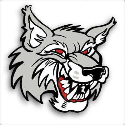 Znalezione obrazy dla zapytania wolf clip art
