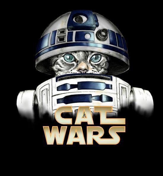 Cat Wars By Detullio Pasquale # artpeople www.artpeoplegallery.com