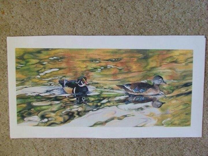 Wood ducks watercolor