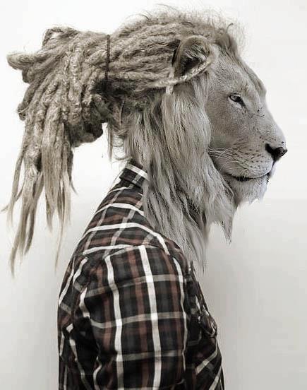 76 best animal-human metamorphosis images on Pinterest ...