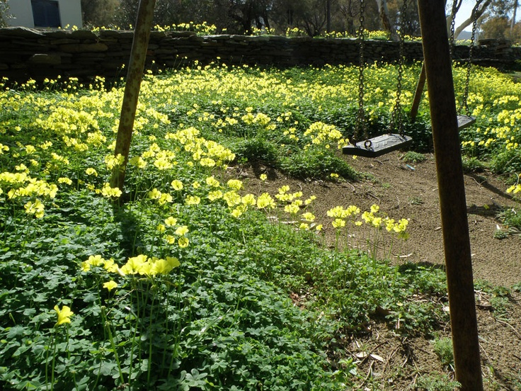 urbantraveltales #spring #greekisland #kea