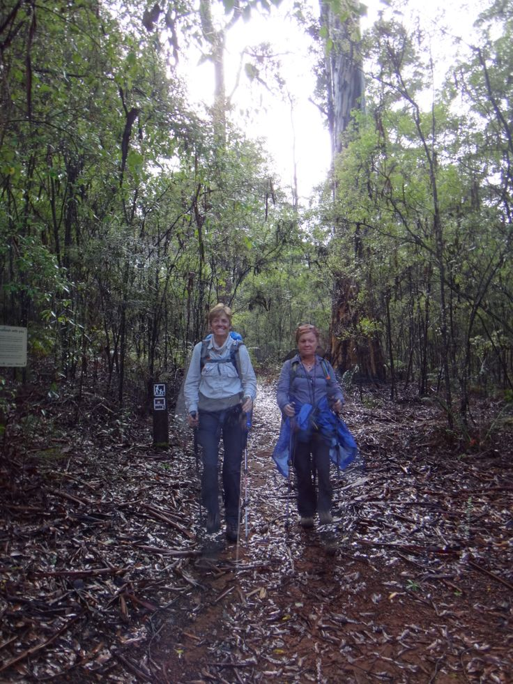 #women #travel #walks #westernaustralia - Join us on the #Bibbulmun 4th July