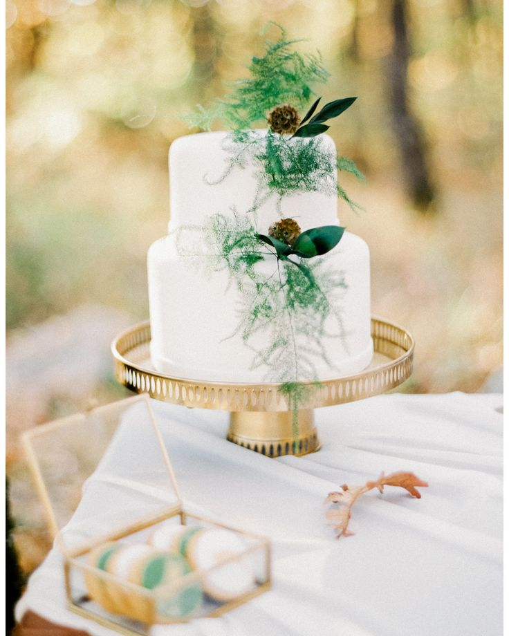 S e a s o n  _  One of my favorite film editorials in the woods for @thesecretowl #thecityowl up on the beautiful North. Design @phaedra_liakou Cake @sugarela Florals @kiposkalou Styling @gettingmarriedingreece