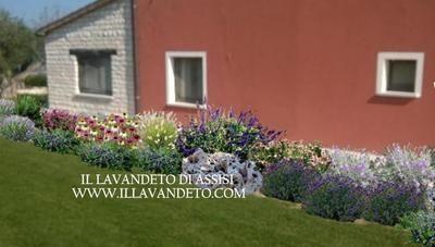 Progettare Il Giardino Gratis : Progettazione giardini online gratis progetti giardini privati