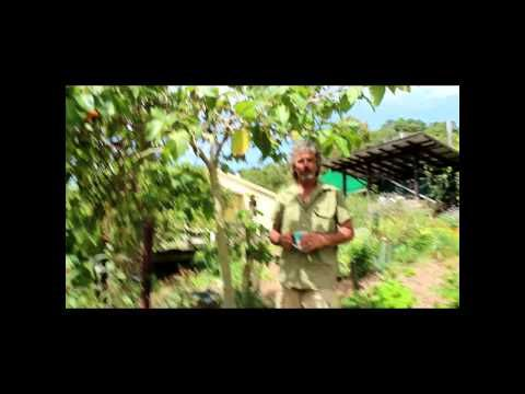 Toms Journey into Permaculture HD