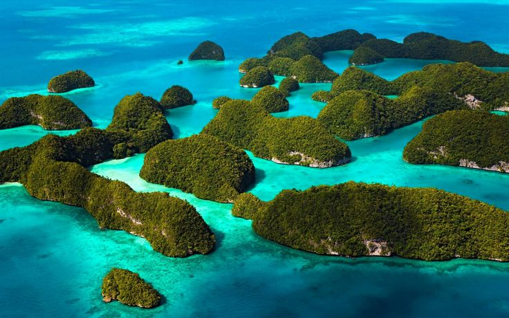 The Andaman and Nicobar Island is the gateway of romance with exotic environment, it has lots of adventure sports & water activities, which makes its most popular and best honeymoon destinations in the World. You can enjoy here, the under-water marine life with varieties of colorful fishes, water-skiing, sailboats, windsurfing and speed boats. It is also the best place if you are a seafood lover. You can taste India's best sea foods & recipes as well as any other Indian traditional foods.