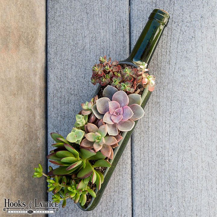 awesome wedding centerpiece idea! succulents planted in a split wine bottle! ~ we ❤ this! moncheribridals.com