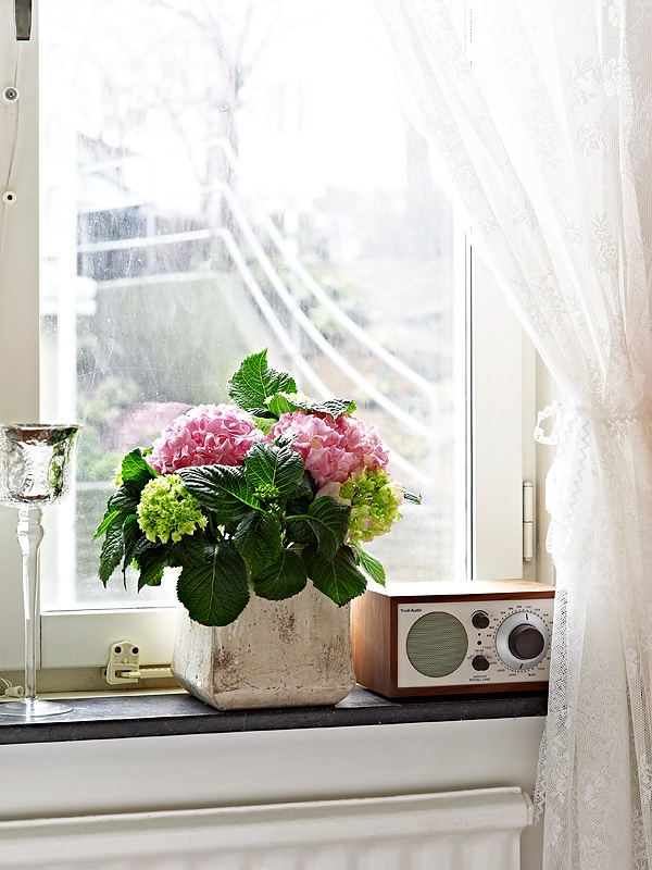 26 Windowsill Decoration Ideas: 107 Best Images About Decorative Window Decor Ideas On