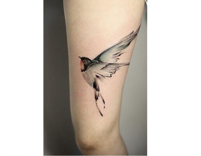 Wzory tatuażu z ptakami. Galeria 30 najpiękniejszych tatuaży z ptakami - kolorowych i czarno-białych, na rękę, plecy i stopy.