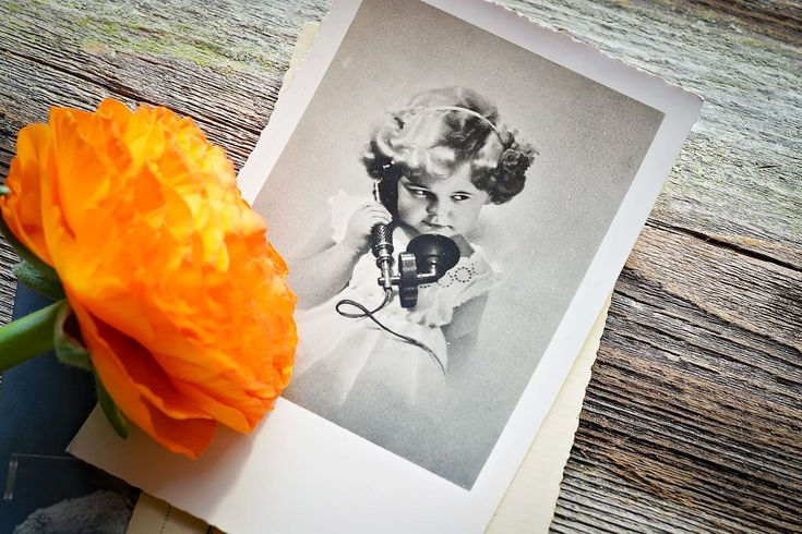 #antique #bloom #blossom #close #flower #girl #old #orange #phone #postcard #ranunculus #still life