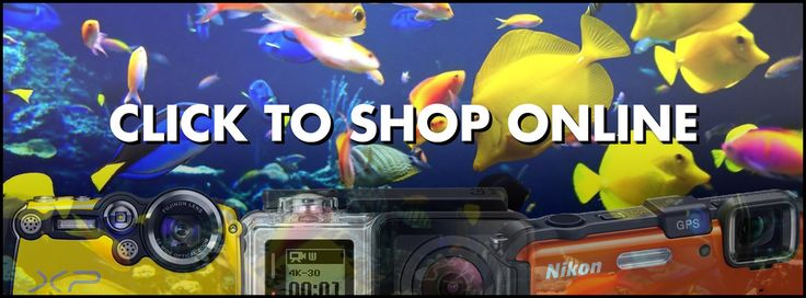 Acquiring the best Waterproof camera needs research and relative research into the different models that happen to be available on the market. On this page are the excellent underwater digital cameras.