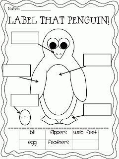Plenty of Penguin Ideas and Printables