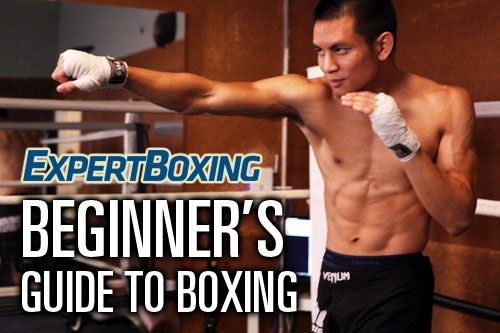 ExpertBoxing.com's Beginners Guide. Form, defense, counter-punching, and combinations.