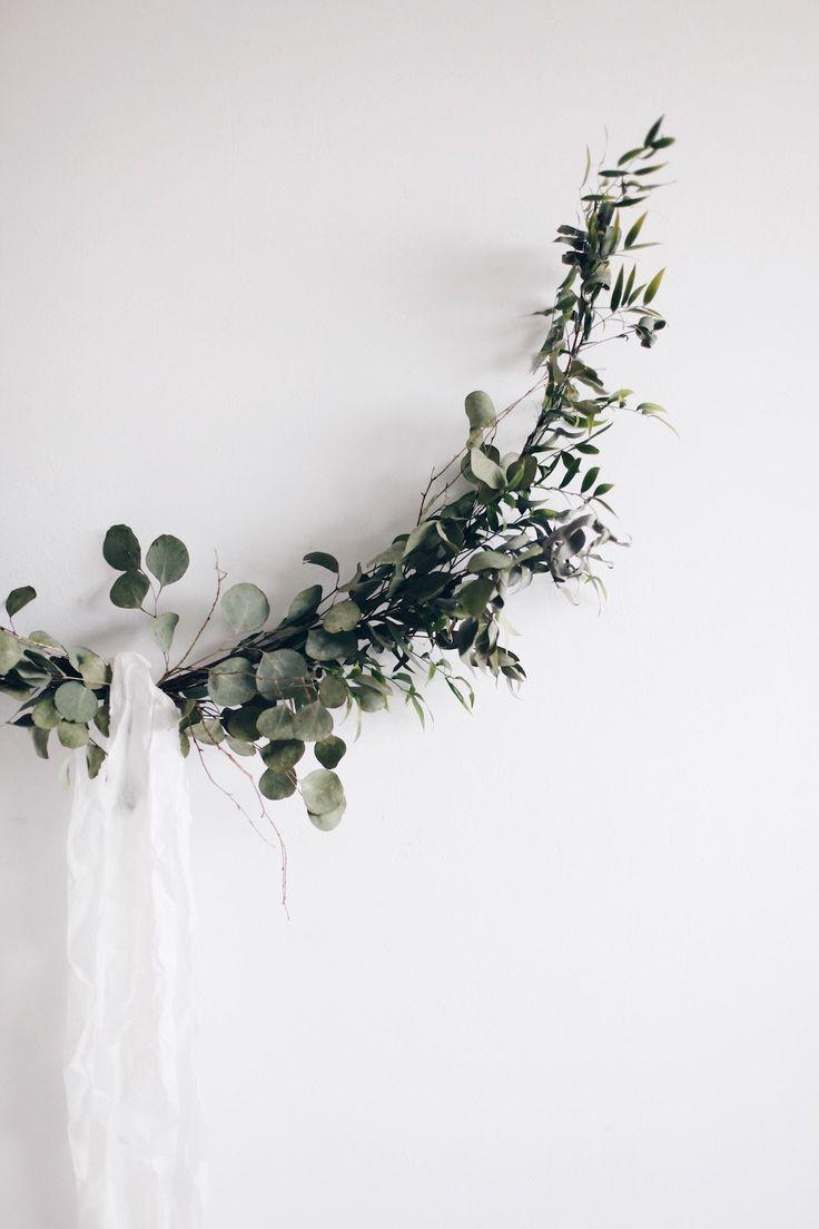 les 12 meilleures images du tableau eucalyptus sur pinterest plantes d 39 int rieur fleurs. Black Bedroom Furniture Sets. Home Design Ideas