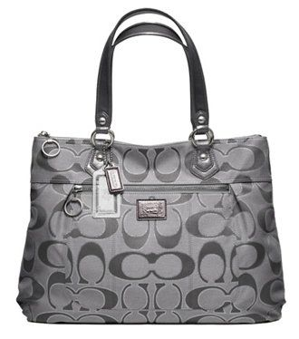 If it is big enough to fit my books/folders for clinic...Coach Signature Lurex Glam Tote - like silver/gray