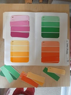 Paint chips for a color matching file folder game