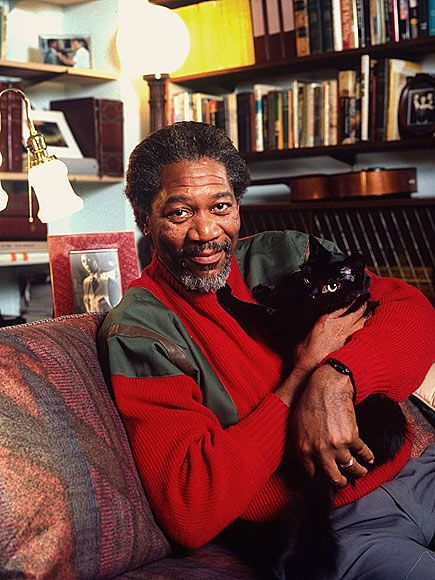 17 Awkward Celebrity And Cat Portraits