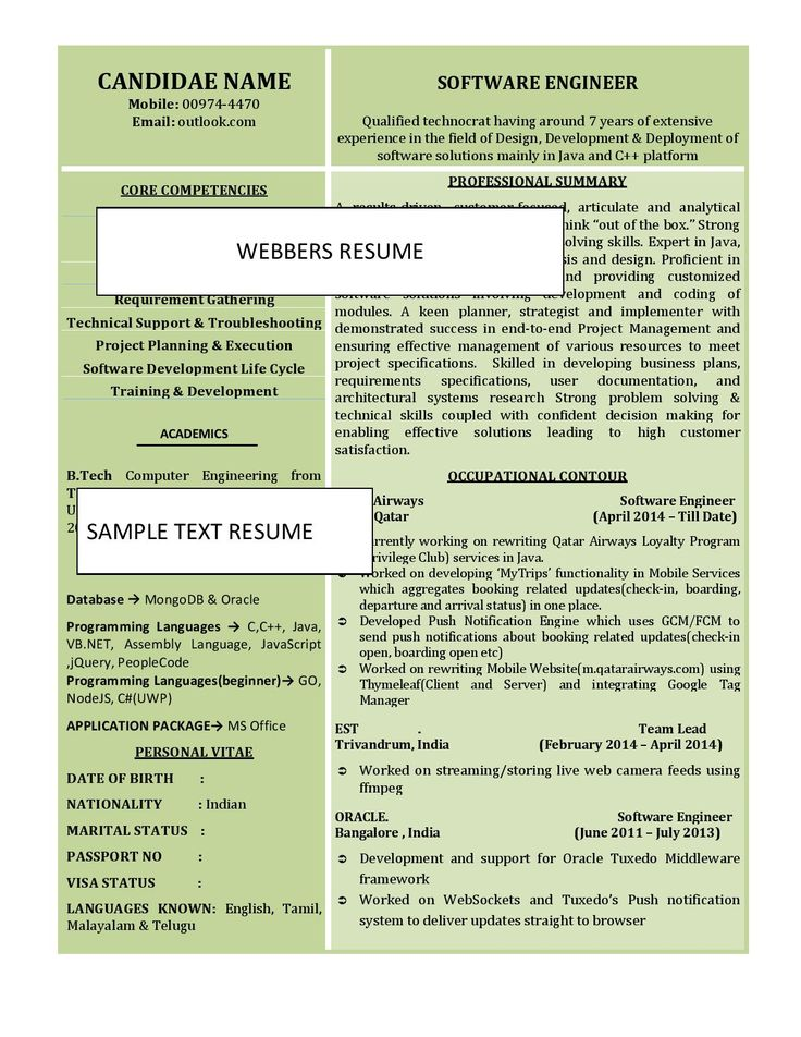 Webbers REsume Text Resume 33 Resume, Core competencies