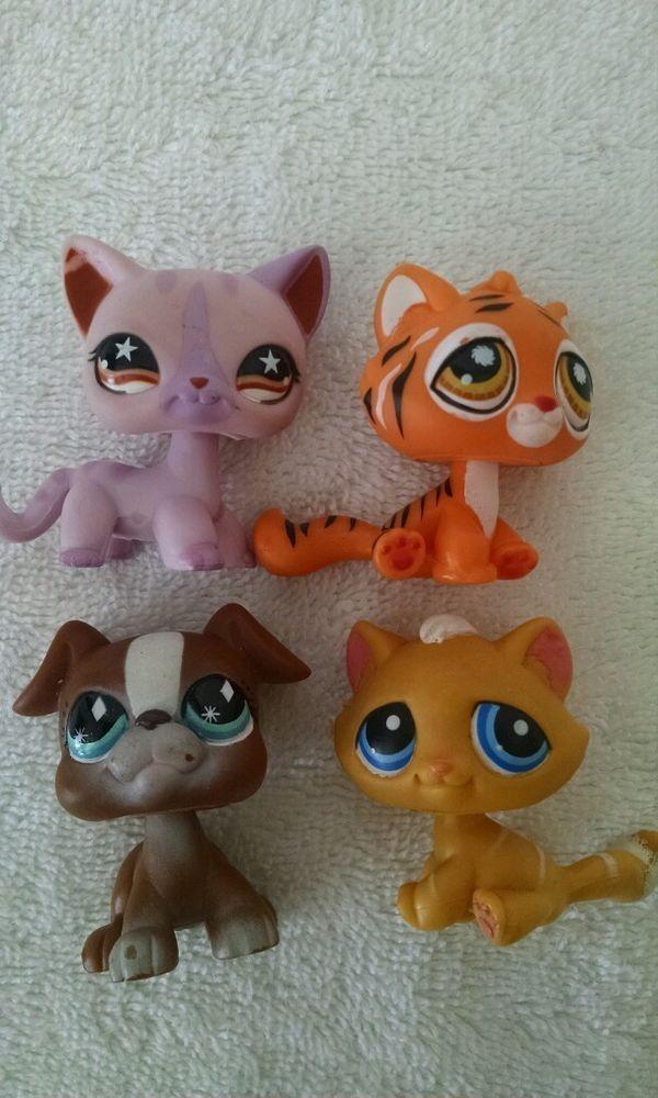 LPS Lot star eyed cat #933 Yellow tabby Kitten #349 Boxer Dog Wild Tiger RaRe? in Toys & Hobbies   eBay