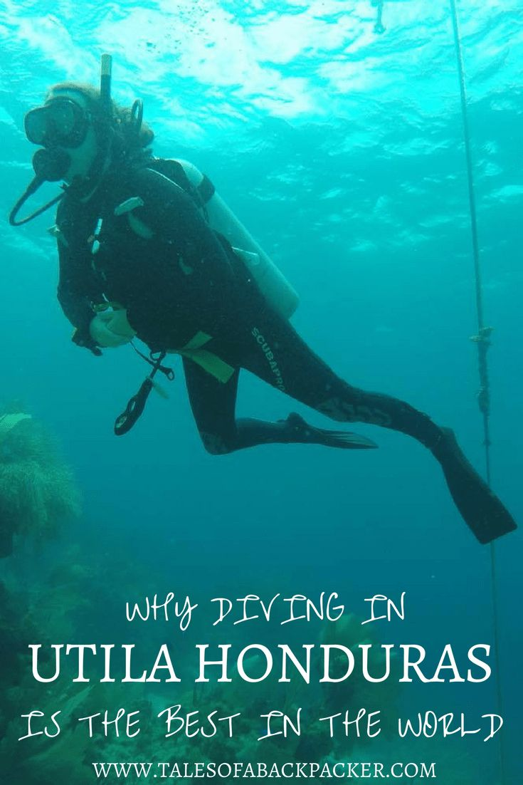 Utila is one of the best places in the world for scuba diving.  You may not have heard of this little island off the coast of Honduras, but if you want to learn to dive, or to dive in in one of the best locations for scuba diving, you had better learn mor