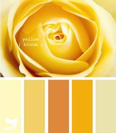 Yellow is a sunny and inspiring color, find more inspirations at http://insplosion.com/inspirations/