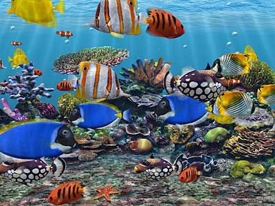 Moving Screensavers For Windows 7 | Windows 7 Screensavers - Free 3D Aquarium Screensaver Download