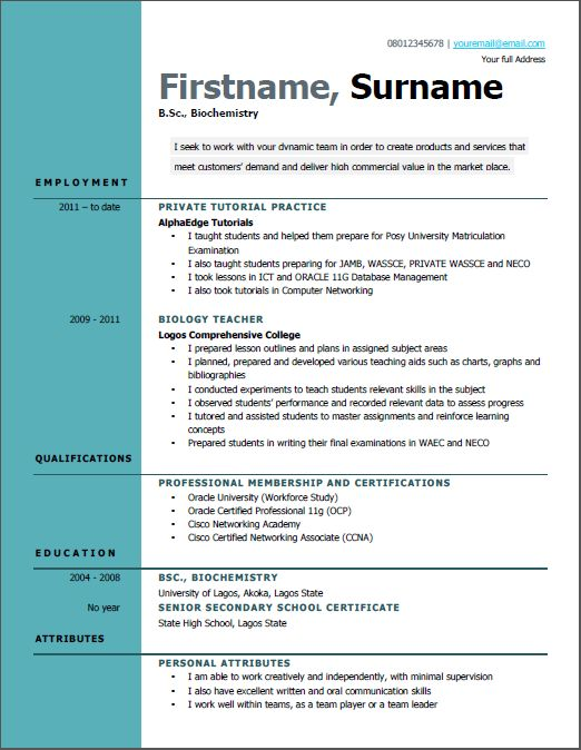 good cv examples for first job in nigeria