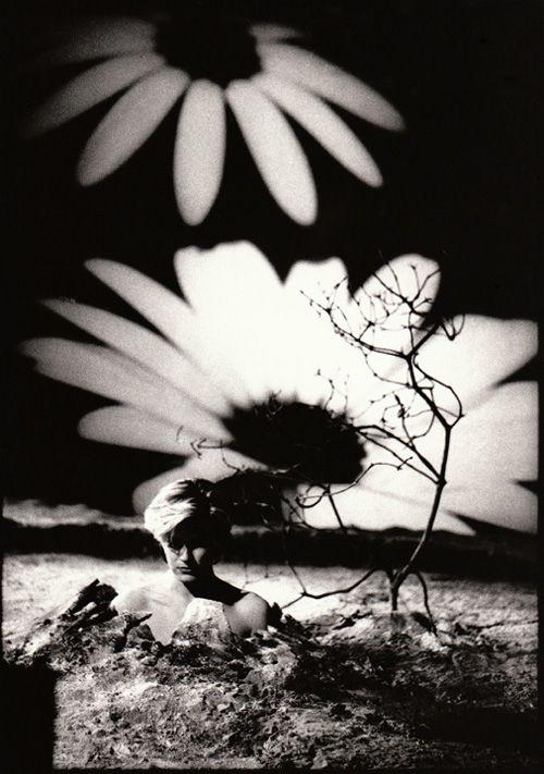 David Sylvian by Anton Corbijn