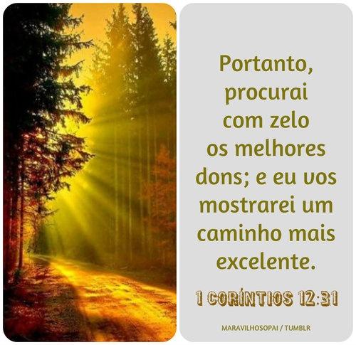 1 Coríntios 12:31, excellent,  way, caminho,1 Corinthians