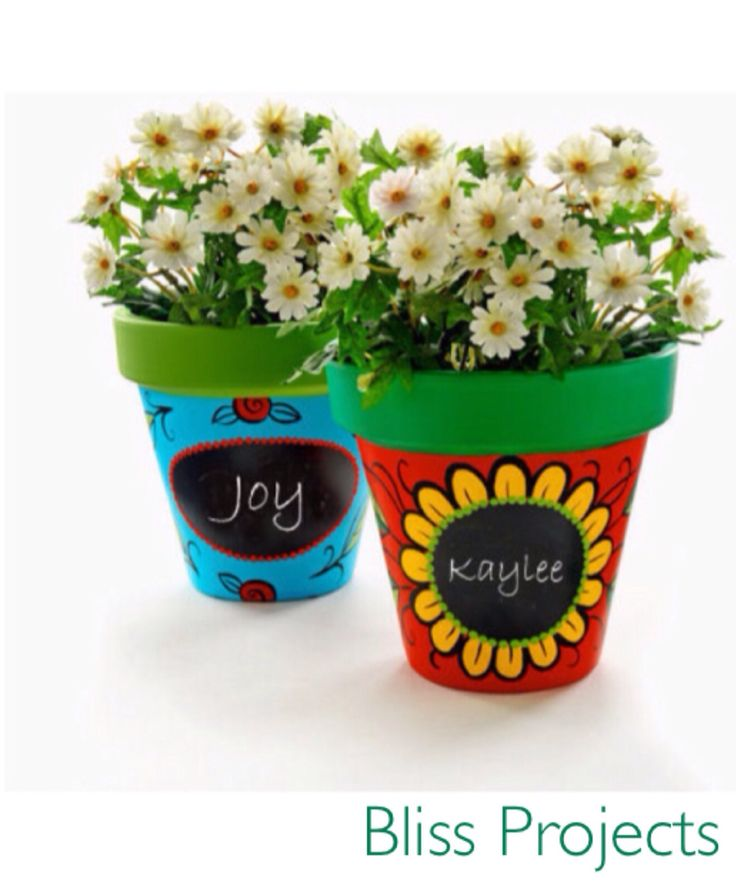 Gift ideas for kids. Encourages them to grow and take care of flowers. Make it personal with name or message on blackboard painted area. Change the surrounding design to whatever you desire. #blissprojects #terracotta #chalkboard #lifeandcolour #herbs #potplants #kitchendecor #gardening #diy #easyherbs #gifts #giftsforkids #flowers #potflowers #personalize