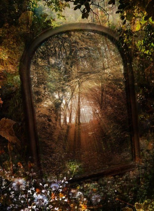 why don't I ever think of mirrors and light?  A photograph like this, is like looking into heaven.Forests, Rabbit Hole, The Doors, Magic, Glasses, Portal, Art, Places, Mirrors Mirrors