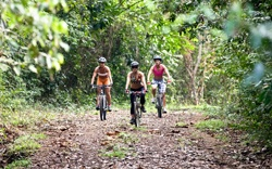 Del Mar Surf Camp - Playa Hermosa, Jaco. Mountain Bike