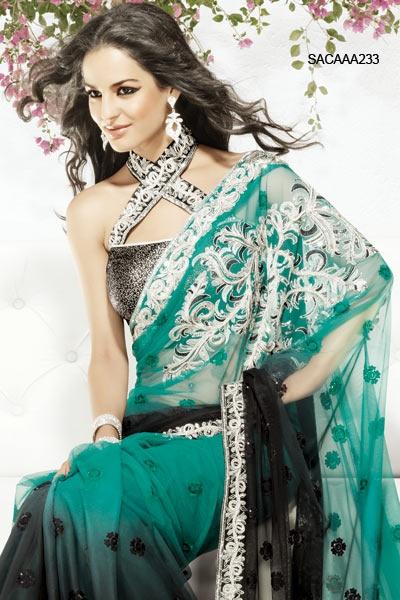 Interesting Sari Blouse Design