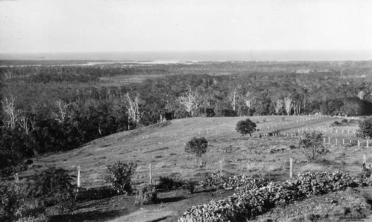 BUDERIM SUNSHINE COAST QLD AUSTRALIA/OVER LOOKING MAROOCHYDORE AND MOOLOOLABA 1934