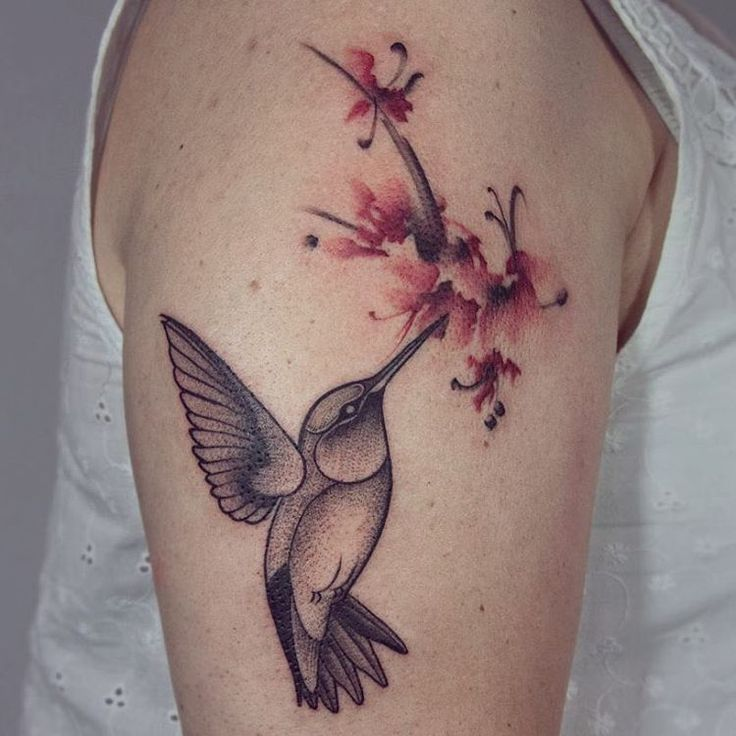 27 Hummingbird Tattoo Designs Ideas: Best 25+ Hummingbird Tattoo Ideas On Pinterest