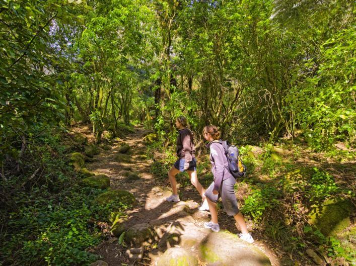 friends walking near Mt Te Aroha. Waikato New Zealand