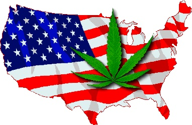 Washington Cannabis Institute Can Help You Get Started Operating & Growing Your Own Medical Marijuana Business in Washington.