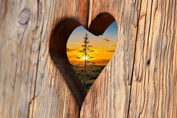 Se întrevede un weekend plin de iubire. Bucurați-vă de sentimente frumoase și trăiri unice!