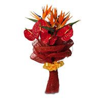 Send Christmas flowers, gifts, cakes to Chennai from local florist fnp.com. We offer gift like fresh flowers, gift hampers, chocolates, roses, cakes and more for Christmas and you can order gifts online in Chennai with free shipping. http://www.fnp.com/flowers/christmas-gifts-to-chennai/--clI_2-cI_3044.html