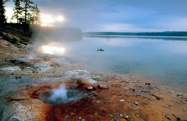 47 Best Yellowstone Trip Planner 2014 Summer Images On Pinterest National Parks Yellowstone