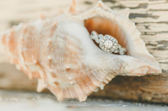 Rings in a seashell make an excellent photo op for a beach wedding!