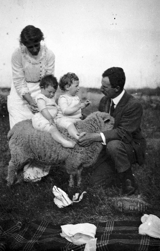 A man and a woman supporting two small children on a sheep 's back. 'Mimosa' farm, King Island, Bass Strait, Tasmania, 1916.