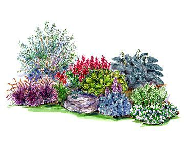 Garden Plans for Shady Spots - Woodland Garden. A handful of hostas, impatiens, and red-twig dogwood combine to create a natural-feeling planting with four-season interest. Garden size: 6 by 12 feet.
