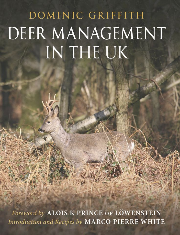 Deer Management in the UK by Dominic Griffith | Quiller Publishing. With 25 years of professional deer management experience, the author shows how to manage deer to their best potential. Whilst much deer management can result in a harassed and pressured deer population, this invaluable guide demonstrates how a more gentle approach can benefit. #deer